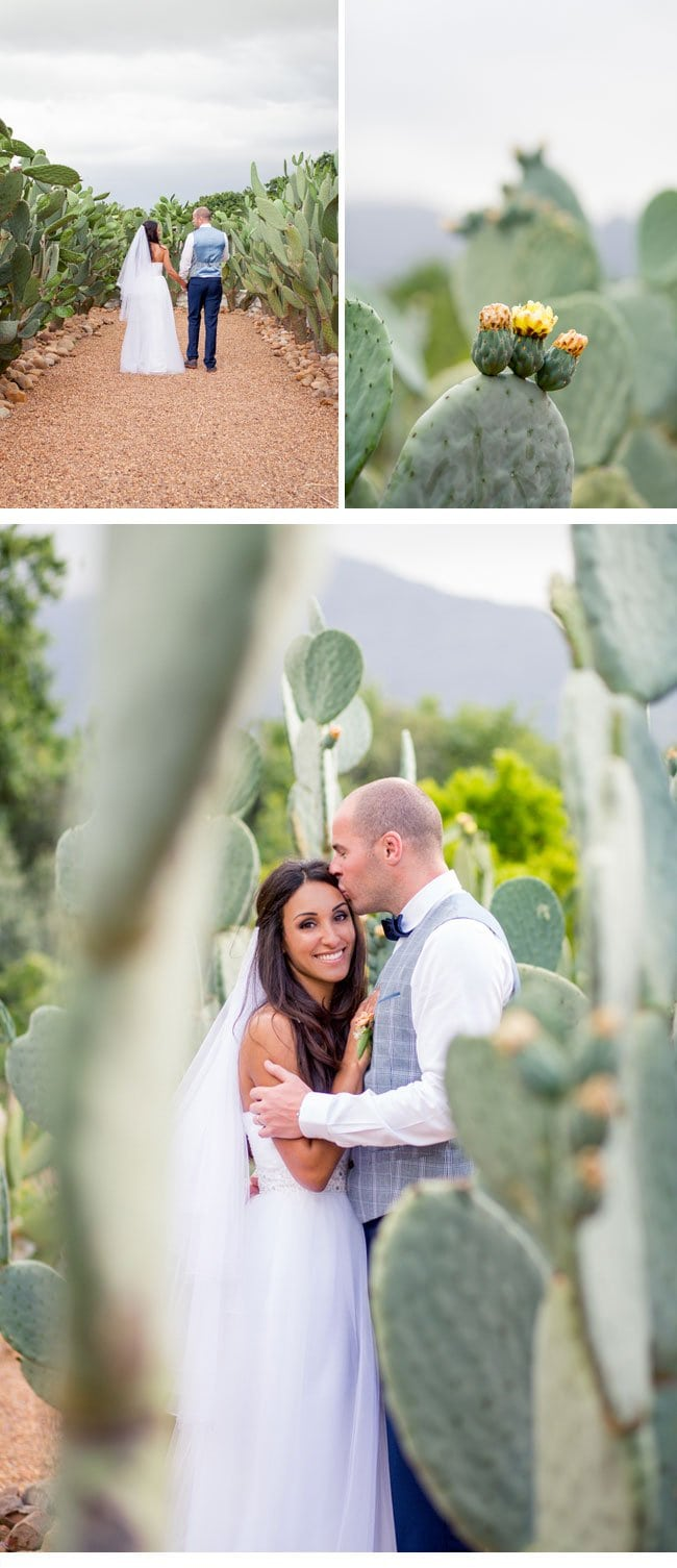 lanica huw18-wedding in southafrica