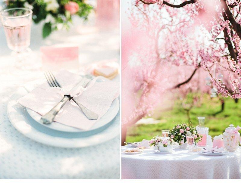 blooming peach tree shoot 0027