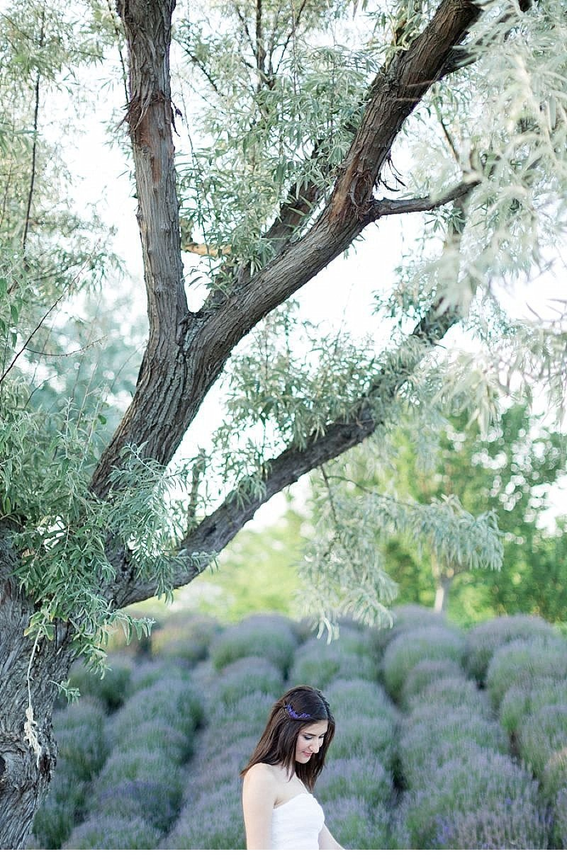 Cansu Onur engagement Lavendelfeld 0017