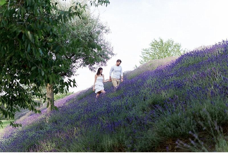 Cansu Onur engagement Lavendelfeld 0030