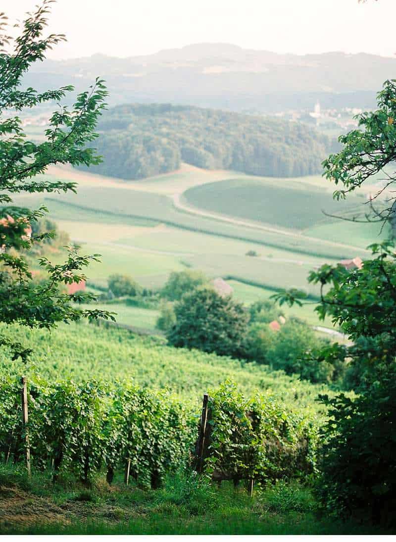 sabi-daniel-gartenhochzeit-steiermark_0038