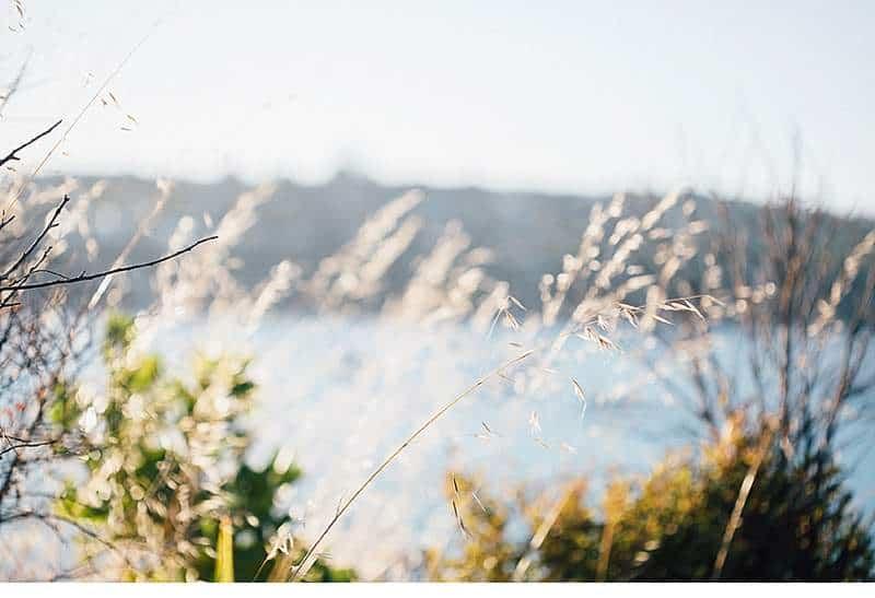 ana-daniel-elopement-neuseeland_0028a