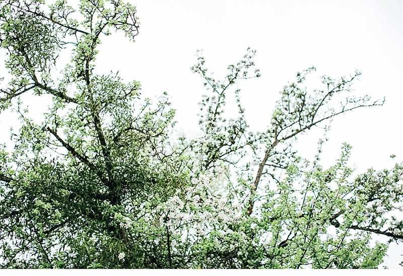 fruehlingshochzeit-gartenhochzeit-vintagehochzeit_0025